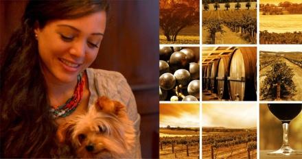Lizeila Martijn the wine taste of exotic dog kellog ciao basta
