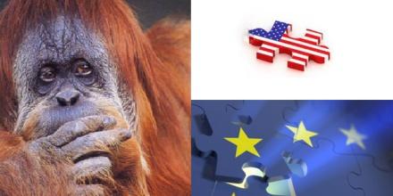 Startup Europe US Dilemma Puzzle